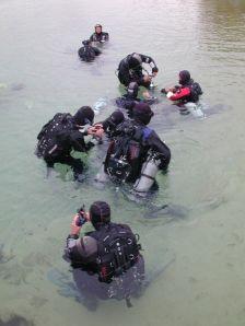 master diver manual