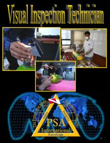 visual inspection technician manual cover