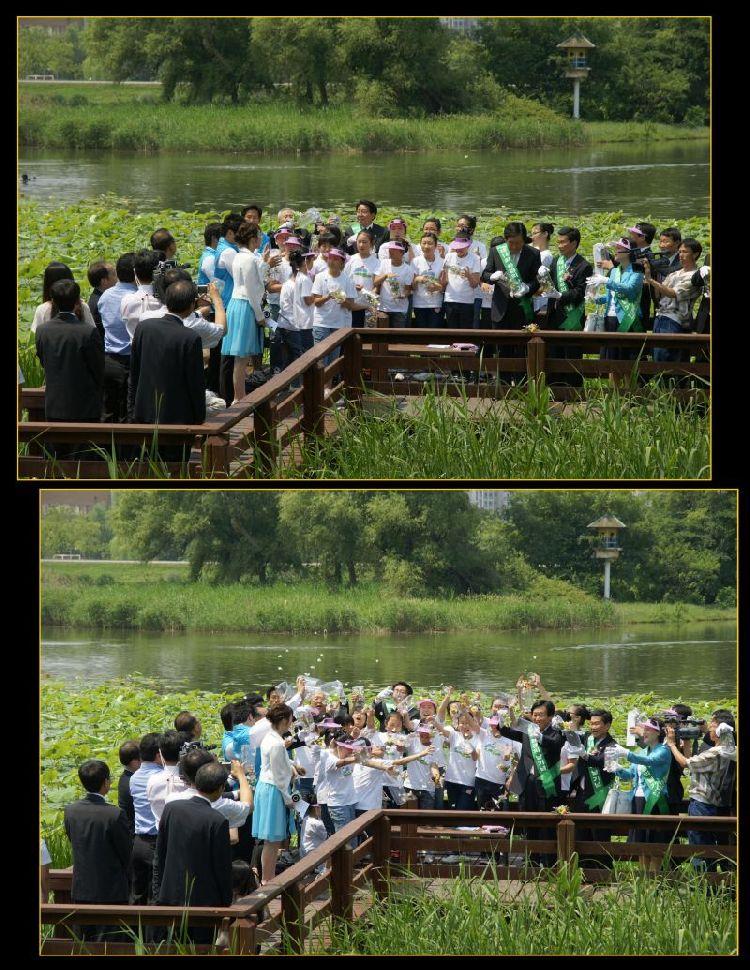 korea environment day 2009