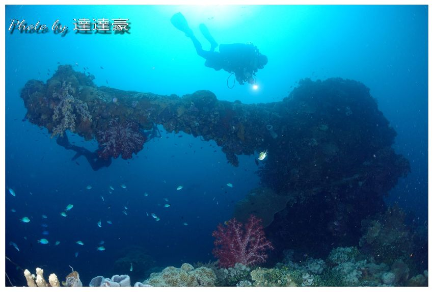 truk lagoon wreck diving trip