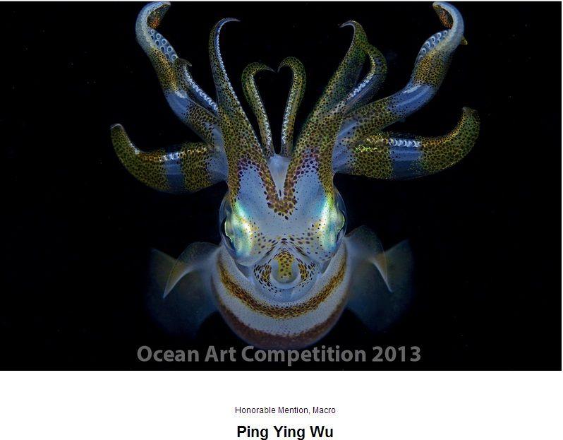 oceant art award 2013