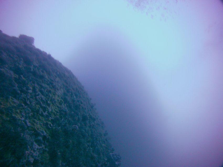 seven skies dive trip