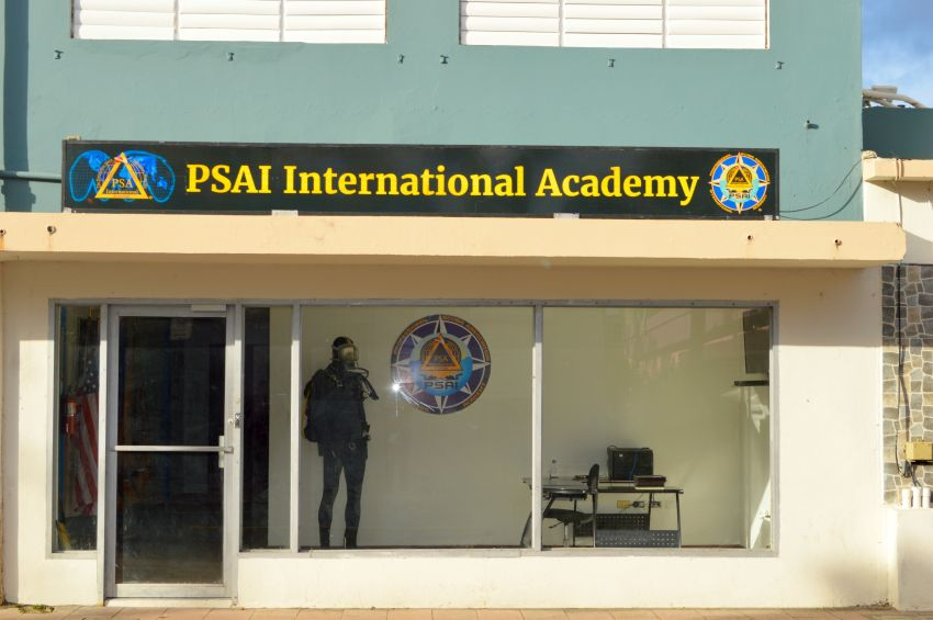PSAI International Academy